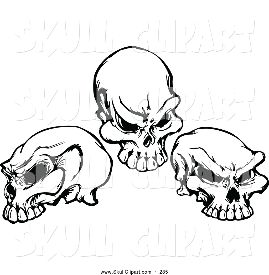 skull clipart new stock skull designs by some of the best online