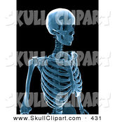 Clip Art of a 3d Blue Human Skeleton X-ray on Black by Mopic