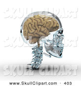 Clip Art of a 3d Brain in a Glass Skull Looking Right by Michael Schmeling