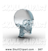 Clip Art of a 3d Frosted Glass Skull Looking Right by Michael Schmeling