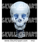 Clip Art of a 3d Highly Accurate Render of a Human Skull on Black by Mopic