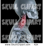 Clip Art of a 3d Skeleton Profile with Neck Bones Highlighted in Red on a Black Background by KJ Pargeter