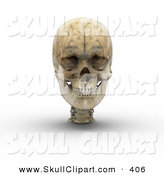 Clip Art of a 3d Transparent Skull with the Visible Brain on White by Michael Schmeling
