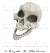 Clip Art of a 3d White Human Skeleton Head Laughing by KJ Pargeter