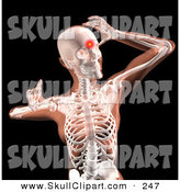 Clip Art of a 3d Woman's Body, with Head Pain Highlighted on Black by KJ Pargeter