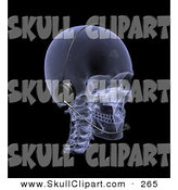 Clip Art of a 3d Xray Skull Wearing a Headset and Looking Right by Michael Schmeling
