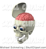 Clip Art of an Open Skull with the Pink Brain Exposed, Big Blue Eyes and Teeth in the Jaw by Michael Schmeling