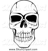 Vector Clip Art of a Black and White Cracked Human Skull by Vector Tradition SM