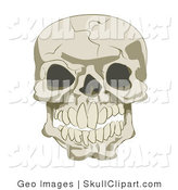 Vector Clip Art of a Cracked Human Skull with Empty Eye Sockets by AtStockIllustration