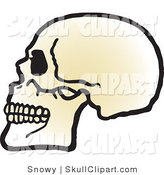 Vector Clip Art of a Profiled Human Skull with Teeth Facing Left by Snowy