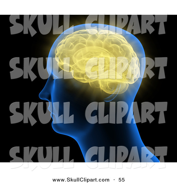 Clip Art of a Blue Head with a Yellow Brain Inside