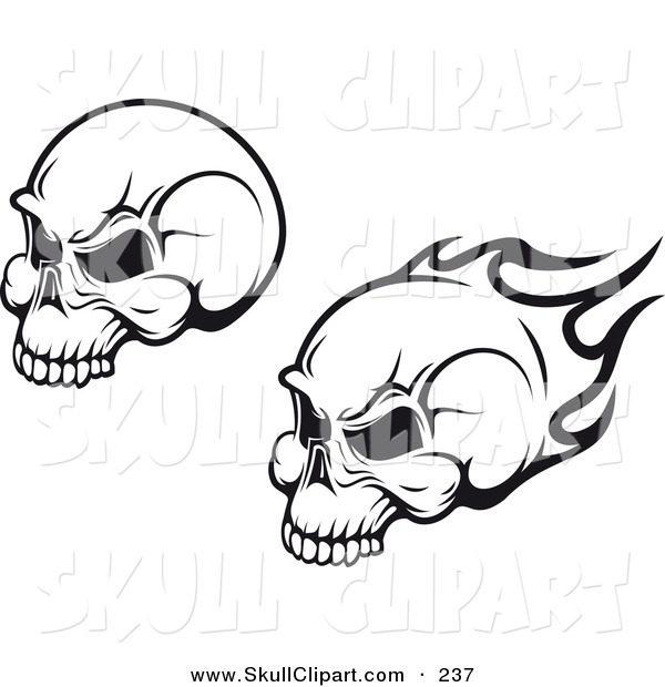 Vector Clip Art of a Black and White Flying Flaming Skulls Digital Collage