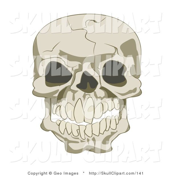 Vector Clip Art of a Cracked Human Skull with Empty Eye Sockets