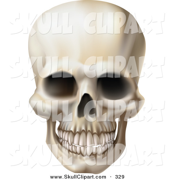 Vector Clip Art of a Creepy Grinning Human Skull with a Clenched Jaw