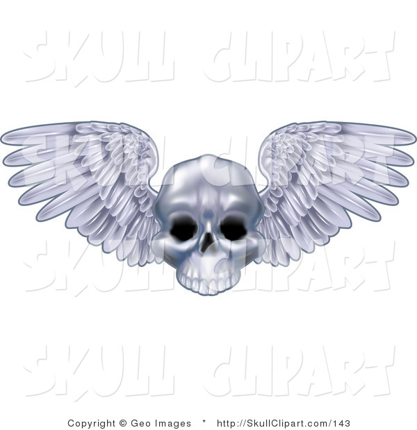 Vector Clip Art of a Human Skull with Open Feathered Wings