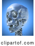 Clip Art of a 3d Skull with an Open Mouth Looking Left by Mopic