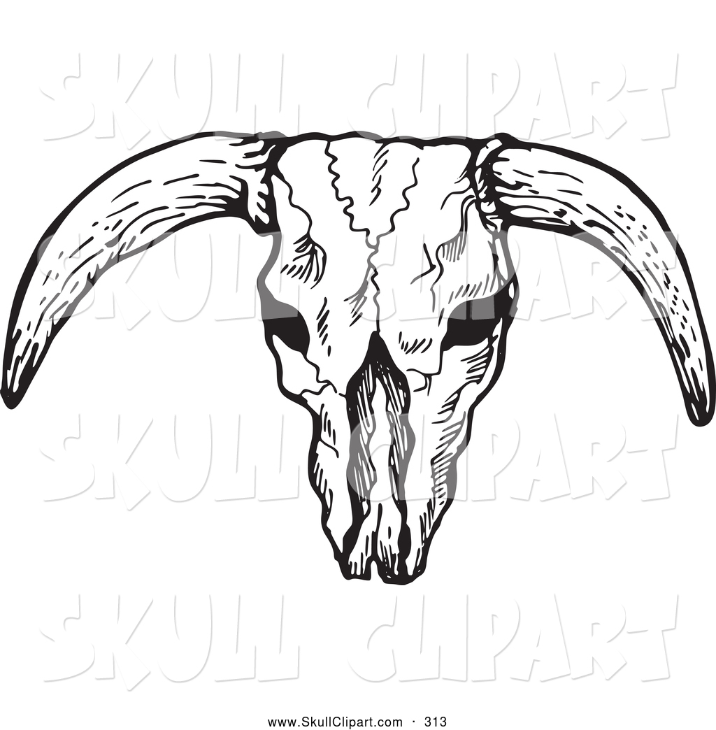 vector clip art of a black and white bleached bull skull barbwire clipart image barb wire circle clip art